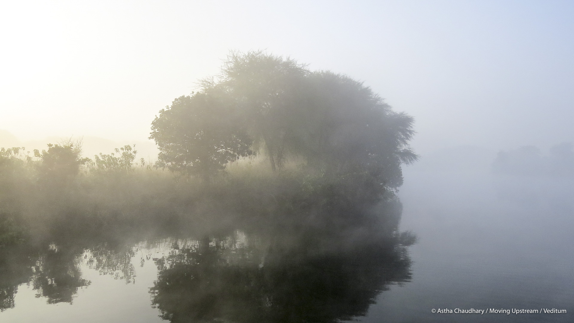 A misty morning on the Betwa